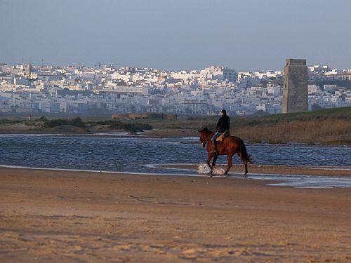 Paseo a caballo por la playa de Castilnovo en Conil