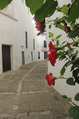 Calle con Flores - Holiday Rentals in Conil