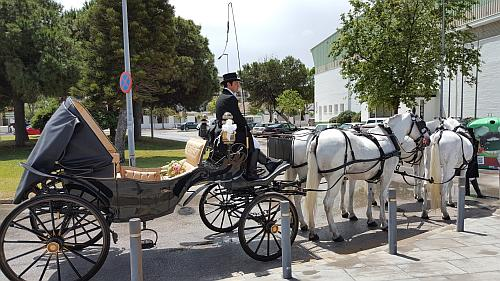 Horse Car at the Sanlúcar Fair