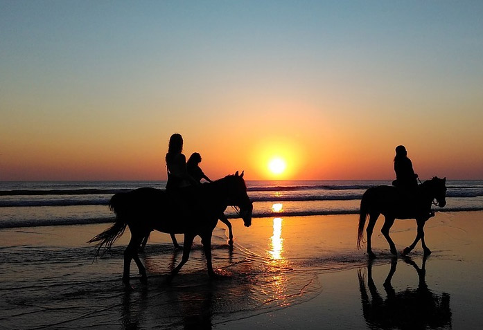 Horse trips - Accommodation Flamenco Villas in Conil